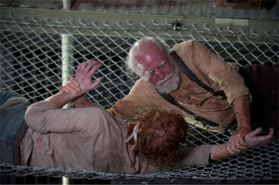 Walking Dead 405 Pic