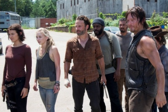 Walking Dead 408 Pic